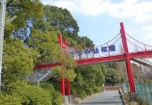 たつみ幼稚園    徒歩8分(582m)