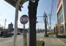名鉄バス「緑丘」停    徒歩5分(376m)